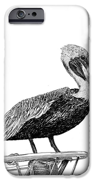 Fame Drawings iPhone Cases - Pelican of Monterey iPhone Case by Jack Pumphrey