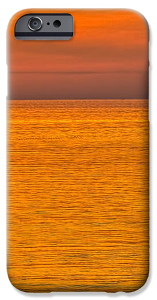Pelican on a Buoy iPhone Case by Marvin Spates