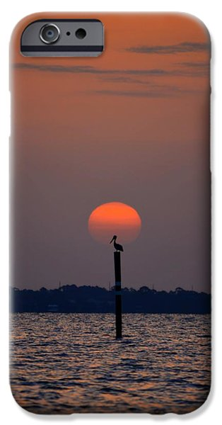 Pelican Sunrise Silhouette on Sound iPhone Case by Jeff at JSJ Photography