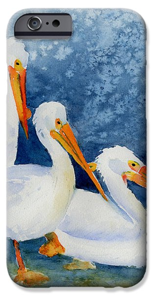 Pelicans At The Weir iPhone Case by Pat Katz