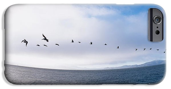 Alcatraz iPhone Cases - Pelicans Flying Over The Sea, Alcatraz iPhone Case by Panoramic Images