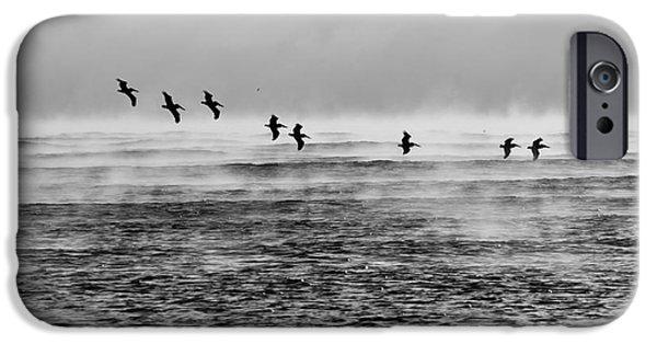 Lynda Dawson-youngclaus Photographer iPhone Cases - Pelicans In The Mist iPhone Case by Lynda Dawson-Youngclaus