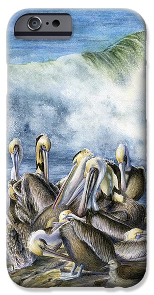 Seabird iPhone Cases - Pelicans iPhone Case by Karen Wright