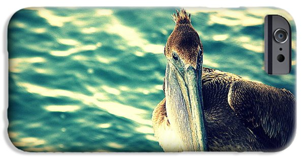 Gray Hair iPhone Cases - Pelicans New Hair Do iPhone Case by Susanne Van Hulst