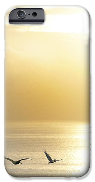 Pelicans over Malibu Beach California iPhone Case by Artist and Photographer Laura Wrede