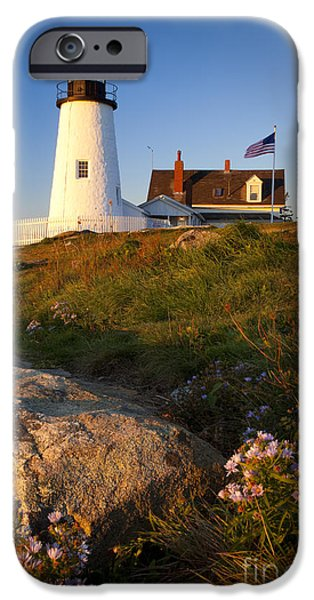 Pemaquid Lighthouse iPhone Cases - Pemaquid Point Lighthouse iPhone Case by Brian Jannsen