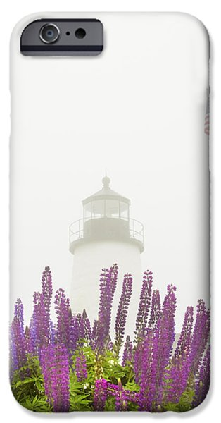 New England Lighthouse Photographs iPhone Cases - Pemaquid Point Lighthouse Lupine Maine Prints iPhone Case by Keith Webber Jr