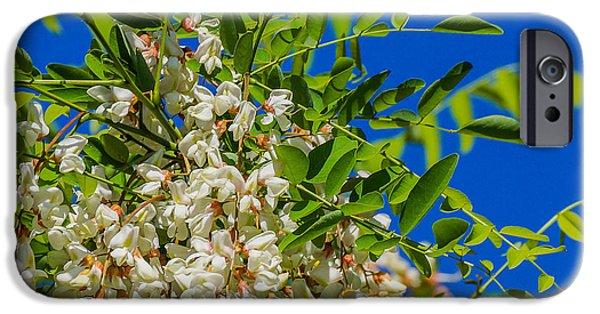 Floral Art iPhone Cases - Pendant Flowers iPhone Case by Gloria Pasko