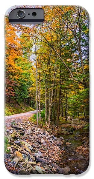 Oak Creek iPhone Cases - Pennsylvania Back Road 3 iPhone Case by Steve Harrington