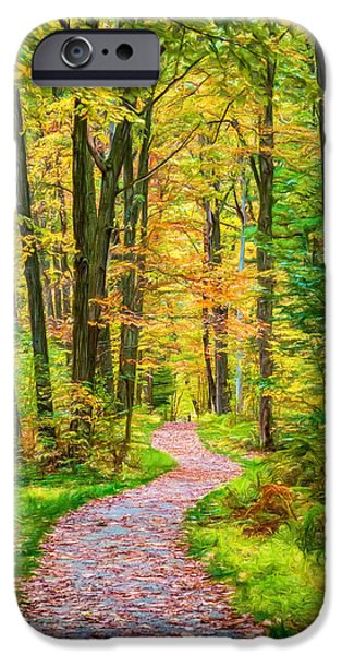 Pathway iPhone Cases - Pennsylvania Path - Paint iPhone Case by Steve Harrington