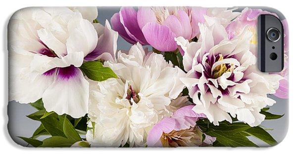 Peony iPhone Cases - Peony flower bouquet iPhone Case by Elena Elisseeva