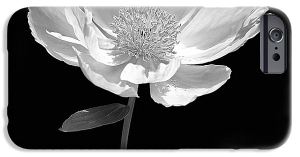 Monotone iPhone Cases - Peony Flower Portrait Black and White iPhone Case by Jennie Marie Schell