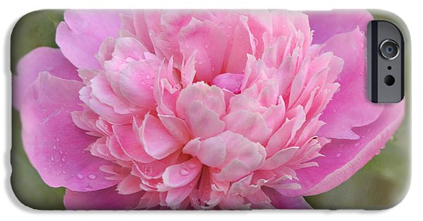 Indiana Flowers iPhone Cases - Peony - Pink iPhone Case by Sandy Keeton
