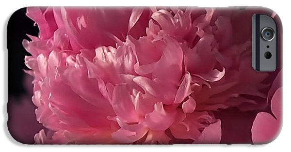 Peonies iPhone Cases - Peony iPhone Case by Rona Black