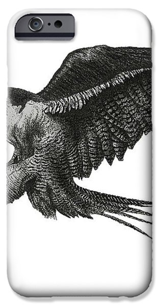 Peregrine Hawk or Falcon Black and White with Pen and Ink Drawing iPhone Case by Mario  Perez