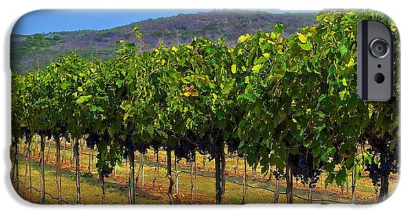 Hallmark Greeting Card iPhone Cases - Perissos Hill Country Vineyard iPhone Case by Kristina Deane