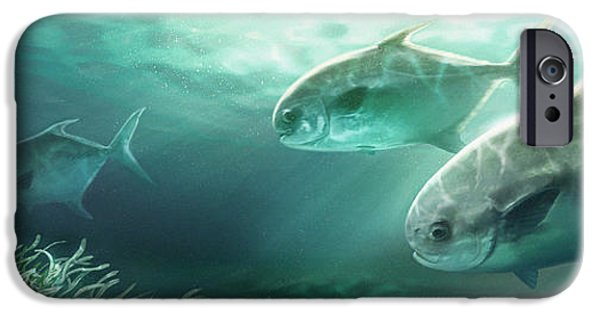 Sports Fish iPhone Cases - Permit Prowl iPhone Case by Javier Lazo