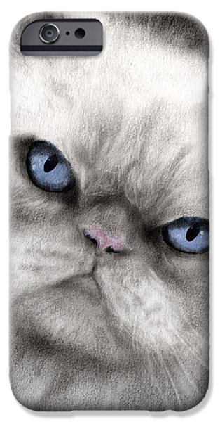 Persian Cat with blue eyes iPhone Case by Svetlana Novikova