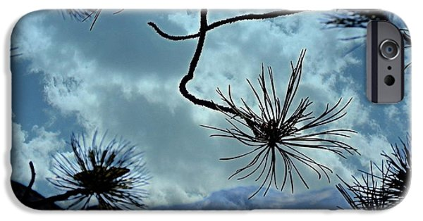 Mount Rose iPhone Cases - Perspective  iPhone Case by Bobbee Rickard