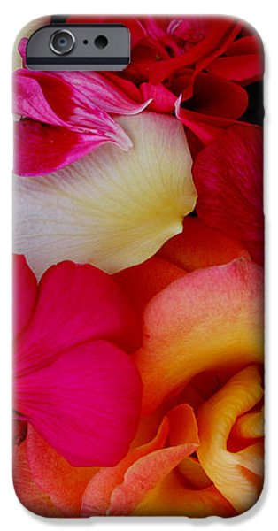 Petal River iPhone Case by Jeanette French
