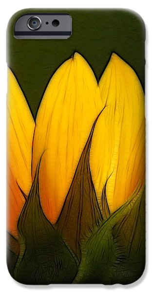 Petales de Soleil - a01 iPhone Case by Variance Collections