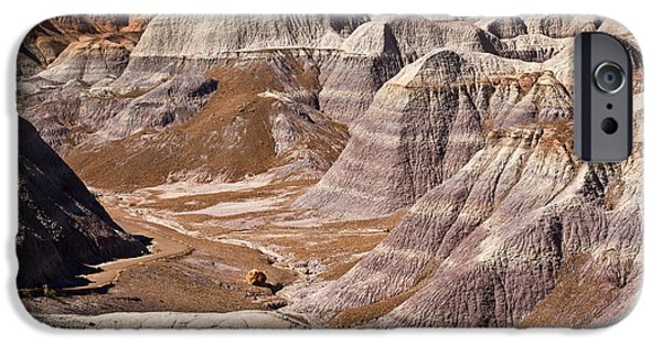 Petrified Forest Arizona iPhone Cases - Petrified Forest I iPhone Case by David Gordon