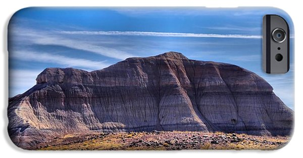Petrified Forest Arizona iPhone Cases - Petrified Forest Landscape iPhone Case by Dan Sproul