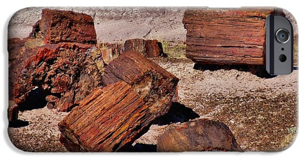 Petrified Forest Arizona iPhone Cases - Petrified Wood iPhone Case by Dan Sproul