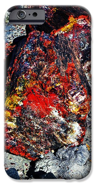 Arizona iPhone Cases - Petrified Wood Log Rainbow Crystalization at Petrified Forest National Park Fresco iPhone Case by Shawn O