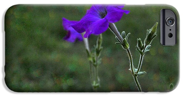 Nature Study iPhone Cases - Petunia Botanical Study Macro iPhone Case by ARTography by Pamela  Smale Williams