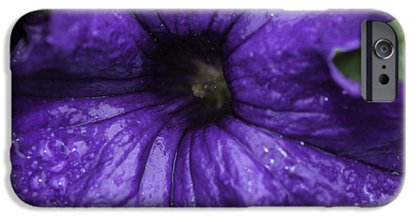 Torn iPhone Cases - Petunia in the Rain iPhone Case by Nadia Morris
