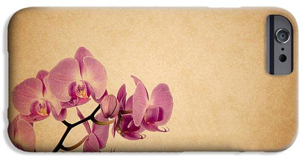Phalaenopsis iPhone Cases - Phalaenopsis Orchid Pink iPhone Case by Mark Rogan