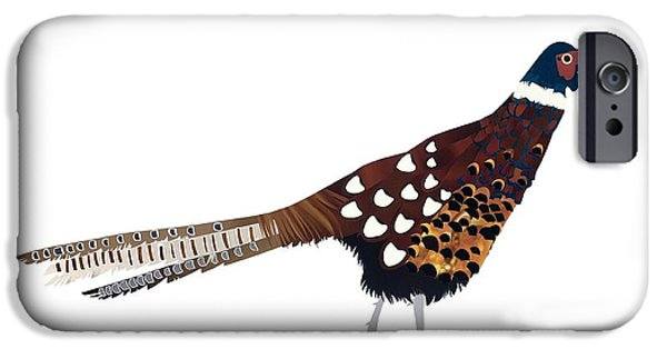 Pheasant iPhone Cases - Pheasant iPhone Case by Isobel Barber