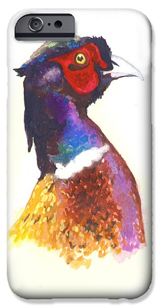Fowl iPhone Cases - Pheasant Watercolor iPhone Case by Alison Fennell