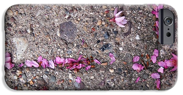 Cherry Blossoms Photographs iPhone Cases - Philadelphia Street Art iPhone Case by Rona Black