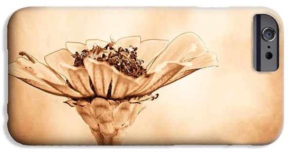 Sepia Flowers iPhone Cases - Phillies Need A Win iPhone Case by Trish Tritz