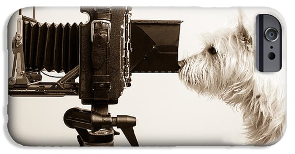 Cute Puppy Photographs iPhone Cases - Pho Dog Grapher iPhone Case by Edward Fielding