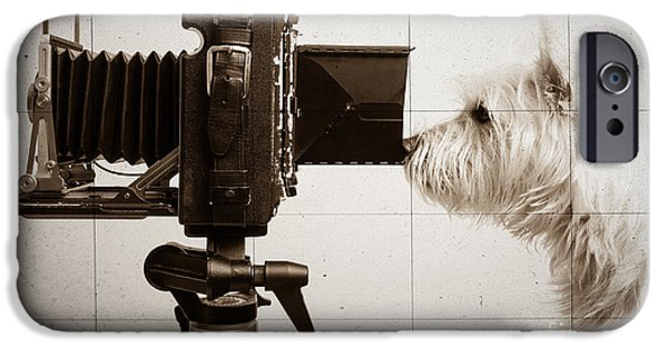 Dog Photography iPhone Cases - Pho Dog Grapher - Ground Glass View iPhone Case by Edward Fielding