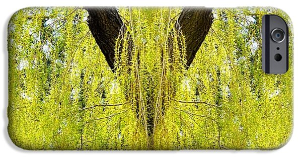 Willow Lake iPhone Cases - Photo Synthesis 5 iPhone Case by Will Borden