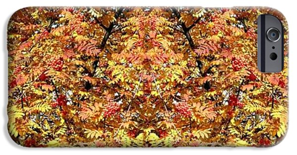 Berry iPhone Cases - Photo Synthesis 6 iPhone Case by Will Borden