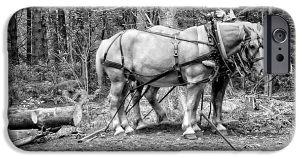 Rural Scenes Digital Art iPhone Cases - Photograph of Horses Pulling Logs In Maine Forest iPhone Case by Keith Webber Jr