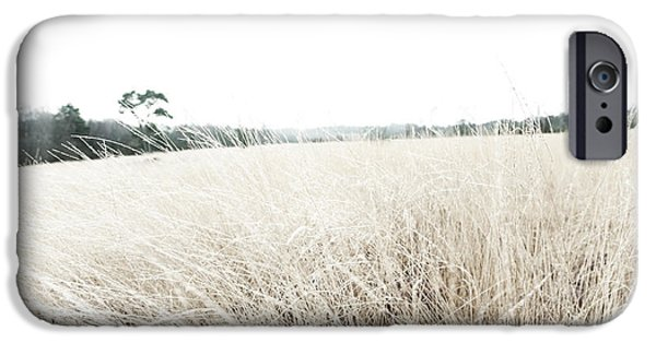 Nature Study iPhone Cases - Photographic Sketch of a Winter Landscape iPhone Case by Natalie Kinnear