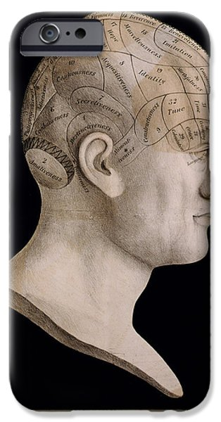 Consciousness iPhone Cases - Phrenology iPhone Case by Nomad Art And  Design