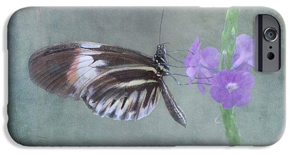 Piano iPhone Cases - Piano Key Butterfly iPhone Case by Kim Hojnacki