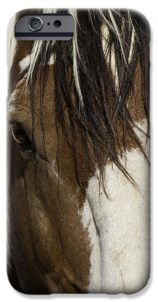 Picasso's Eyes iPhone Case by Carol Walker