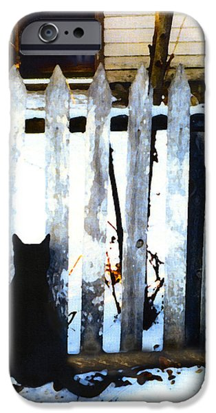Alley Mixed Media iPhone Cases - Picket Fence Love iPhone Case by Elia Peters