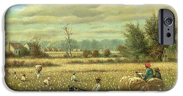 Gathering Photographs iPhone Cases - Picking Cotton Oil On Board iPhone Case by William Aiken Walker