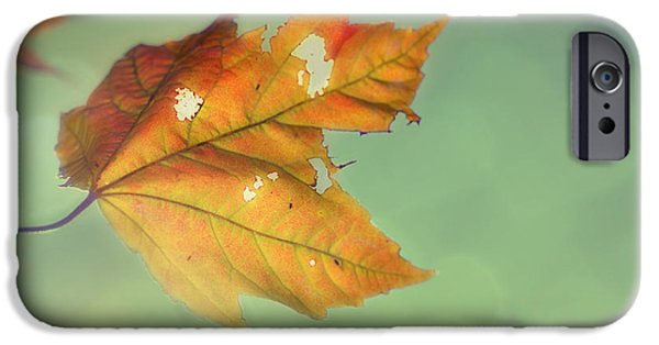 Autumn iPhone Cases - Pieces of Me iPhone Case by Amy Tyler