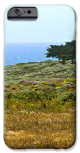 Piedras Blancas Lighthouse Near San Simeon and Cambria Along HWY 1 in California iPhone Case by Artist and Photographer Laura Wrede