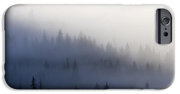 Forest iPhone Cases - Piercing the Veil iPhone Case by Mike  Dawson